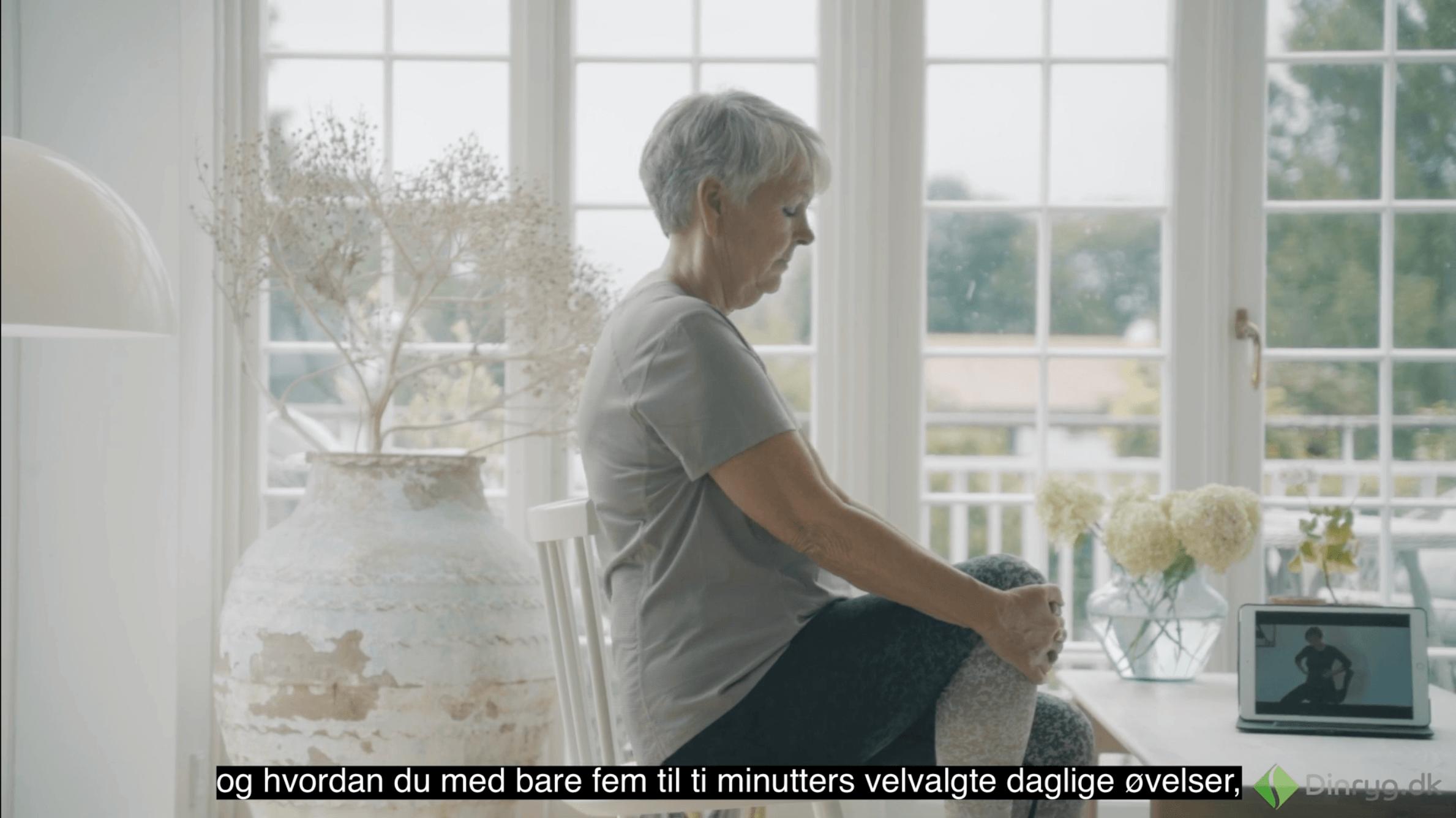 dinryg.dk